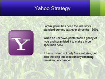 0000093722 PowerPoint Templates - Slide 11