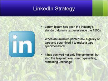 0000093722 PowerPoint Templates - Slide 12