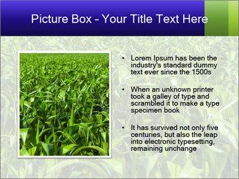 0000093722 PowerPoint Templates - Slide 13