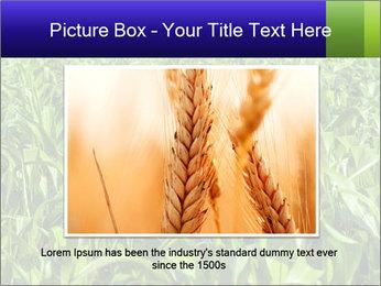 0000093722 PowerPoint Templates - Slide 15