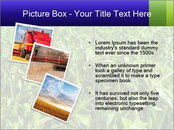 0000093722 PowerPoint Templates - Slide 17
