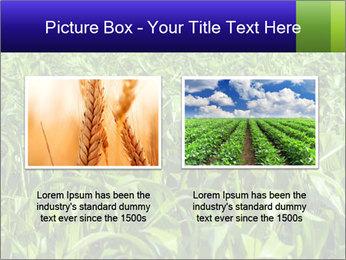 0000093722 PowerPoint Templates - Slide 18