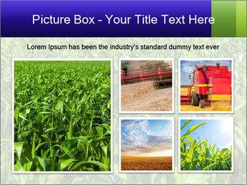 0000093722 PowerPoint Templates - Slide 19