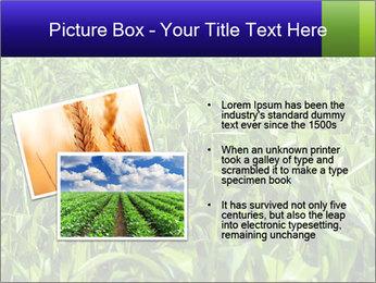 0000093722 PowerPoint Templates - Slide 20