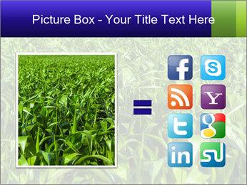 0000093722 PowerPoint Templates - Slide 21