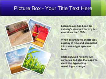 0000093722 PowerPoint Templates - Slide 23