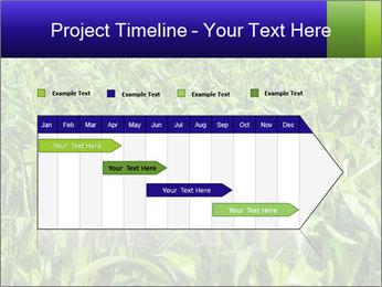 0000093722 PowerPoint Templates - Slide 25