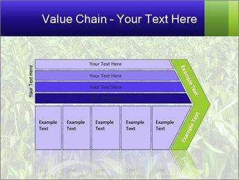 0000093722 PowerPoint Templates - Slide 27