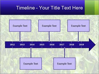 0000093722 PowerPoint Templates - Slide 28