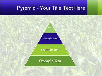 0000093722 PowerPoint Templates - Slide 30