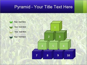 0000093722 PowerPoint Templates - Slide 31