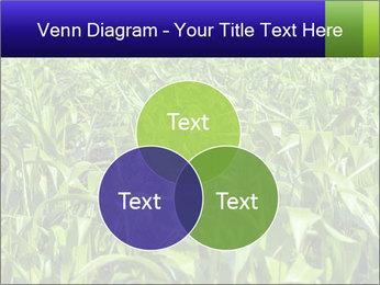 0000093722 PowerPoint Templates - Slide 33