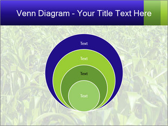 0000093722 PowerPoint Templates - Slide 34