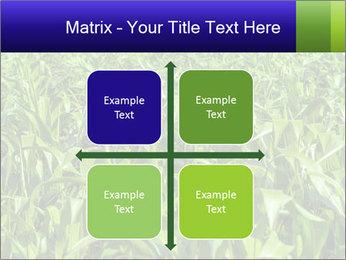 0000093722 PowerPoint Templates - Slide 37