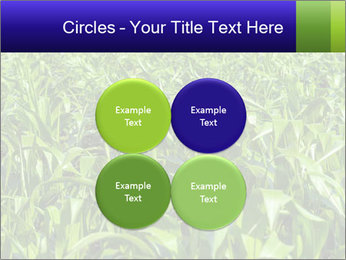 0000093722 PowerPoint Templates - Slide 38