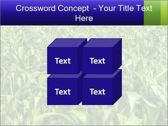 0000093722 PowerPoint Templates - Slide 39