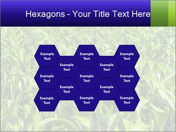 0000093722 PowerPoint Templates - Slide 44