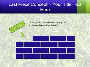 0000093722 PowerPoint Templates - Slide 46