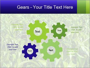 0000093722 PowerPoint Templates - Slide 47