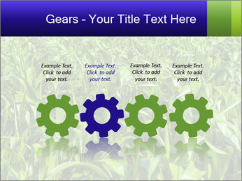 0000093722 PowerPoint Templates - Slide 48