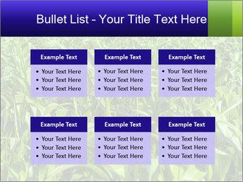 0000093722 PowerPoint Templates - Slide 56