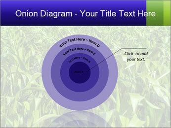 0000093722 PowerPoint Templates - Slide 61