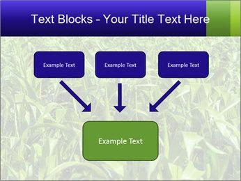 0000093722 PowerPoint Templates - Slide 70