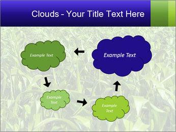 0000093722 PowerPoint Templates - Slide 72