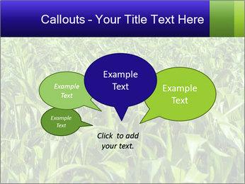 0000093722 PowerPoint Templates - Slide 73