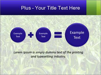 0000093722 PowerPoint Templates - Slide 75