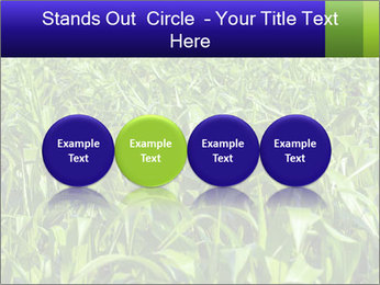0000093722 PowerPoint Templates - Slide 76