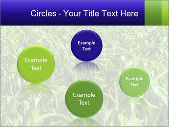 0000093722 PowerPoint Templates - Slide 77