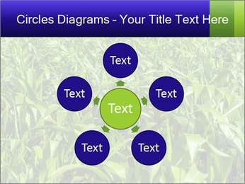 0000093722 PowerPoint Templates - Slide 78