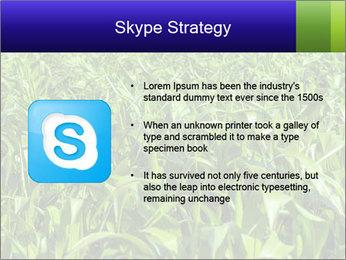 0000093722 PowerPoint Templates - Slide 8