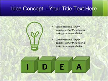 0000093722 PowerPoint Templates - Slide 80