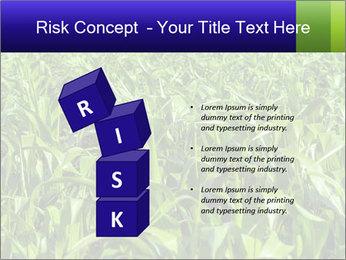 0000093722 PowerPoint Templates - Slide 81