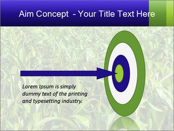 0000093722 PowerPoint Templates - Slide 83