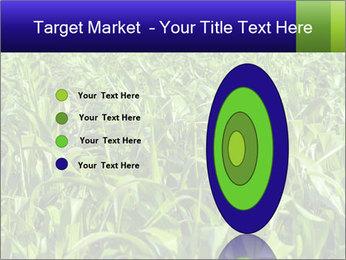 0000093722 PowerPoint Templates - Slide 84