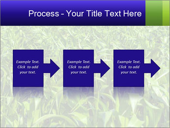 0000093722 PowerPoint Templates - Slide 88