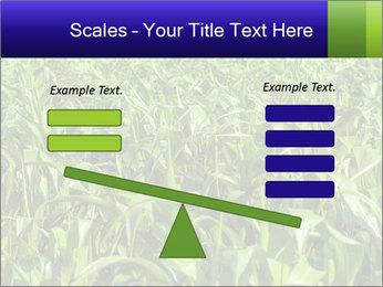 0000093722 PowerPoint Templates - Slide 89