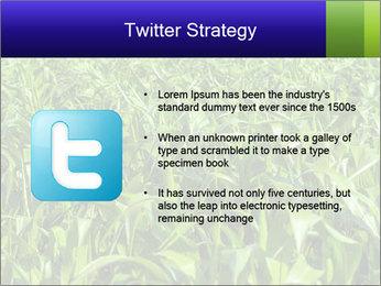0000093722 PowerPoint Templates - Slide 9