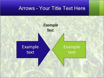 0000093722 PowerPoint Templates - Slide 90
