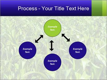 0000093722 PowerPoint Templates - Slide 91
