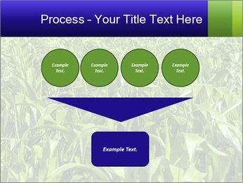 0000093722 PowerPoint Templates - Slide 93