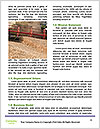 0000093722 Word Templates - Page 4