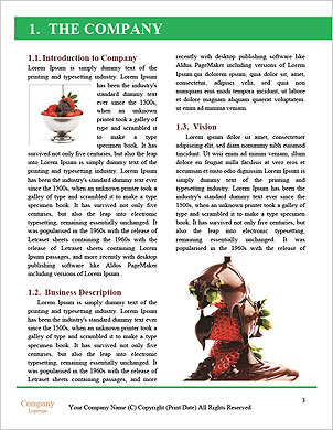 0000093726 Word Template - Page 3