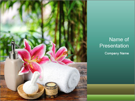 0000093729 PowerPoint Template
