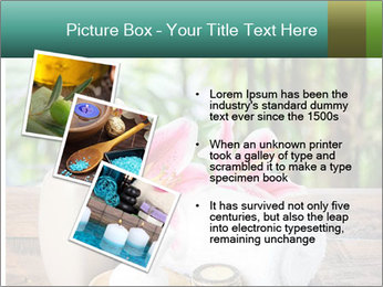 0000093729 PowerPoint Templates - Slide 17