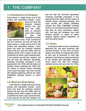 0000093729 Word Template - Page 3