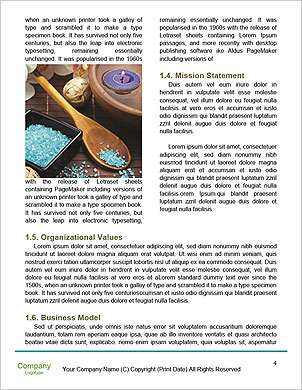 0000093729 Word Template - Page 4